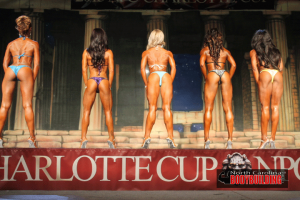 2015CharlotteCup3225.png
